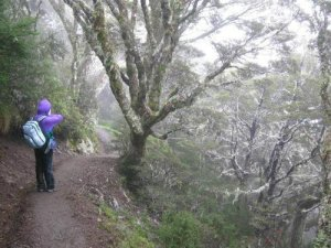 Kepler Track, New Zealand - New Zealand South itinerary