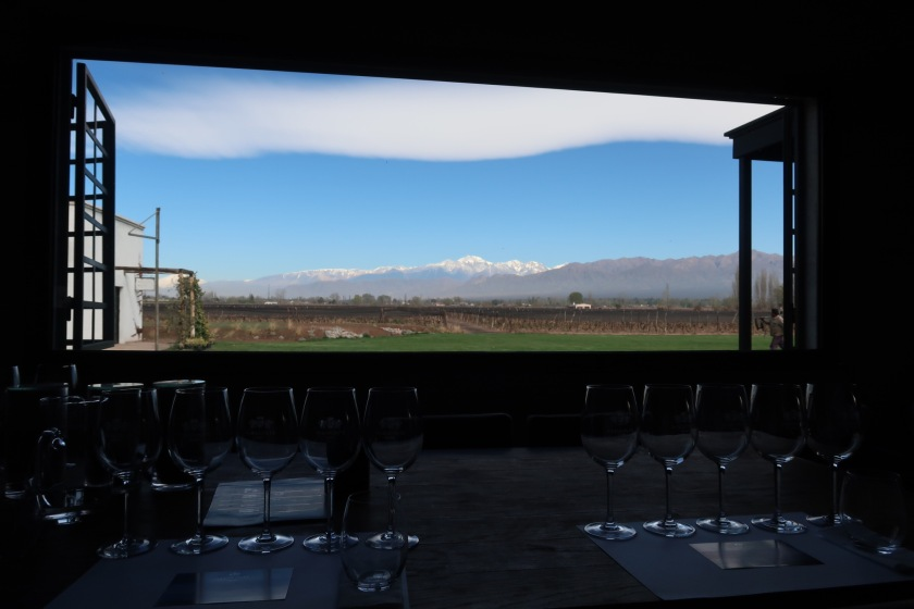 View from a winery near Mendoza
