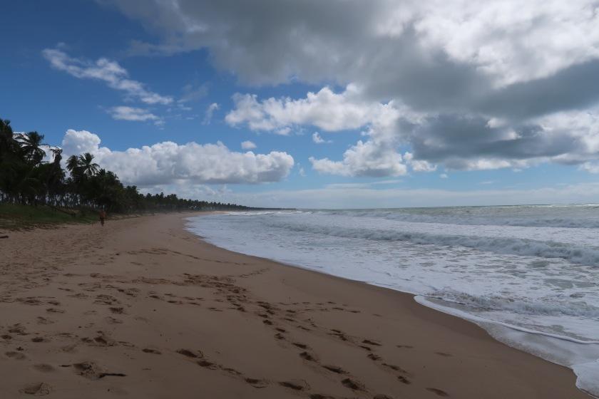 Praia do Forte beach
